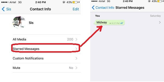 starred-messages-whatsapp-ios